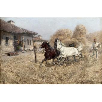 Вършитба в Радомирско – 1897