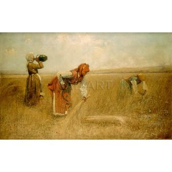 Жътва – 1892