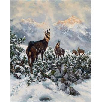 Диви кози (1910)