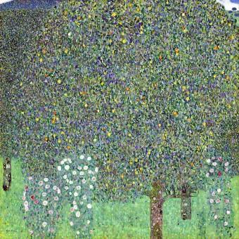 Розови храсти под дърветата (1905)