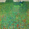 Маково поле (1907)