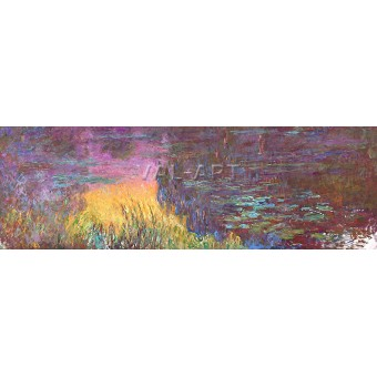 Водни лилии  (1917)