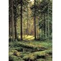 РЕПРОДУКЦИИ НА КАРТИНИ Иглолистна гора, слънчев ден (1895)